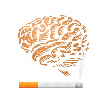 Brain & Smoking