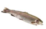 Fish-rotated