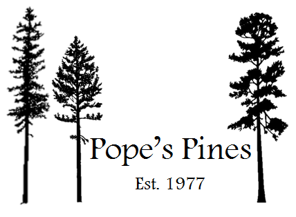 1-Pope's Pines (Presenting and Promise Garden)