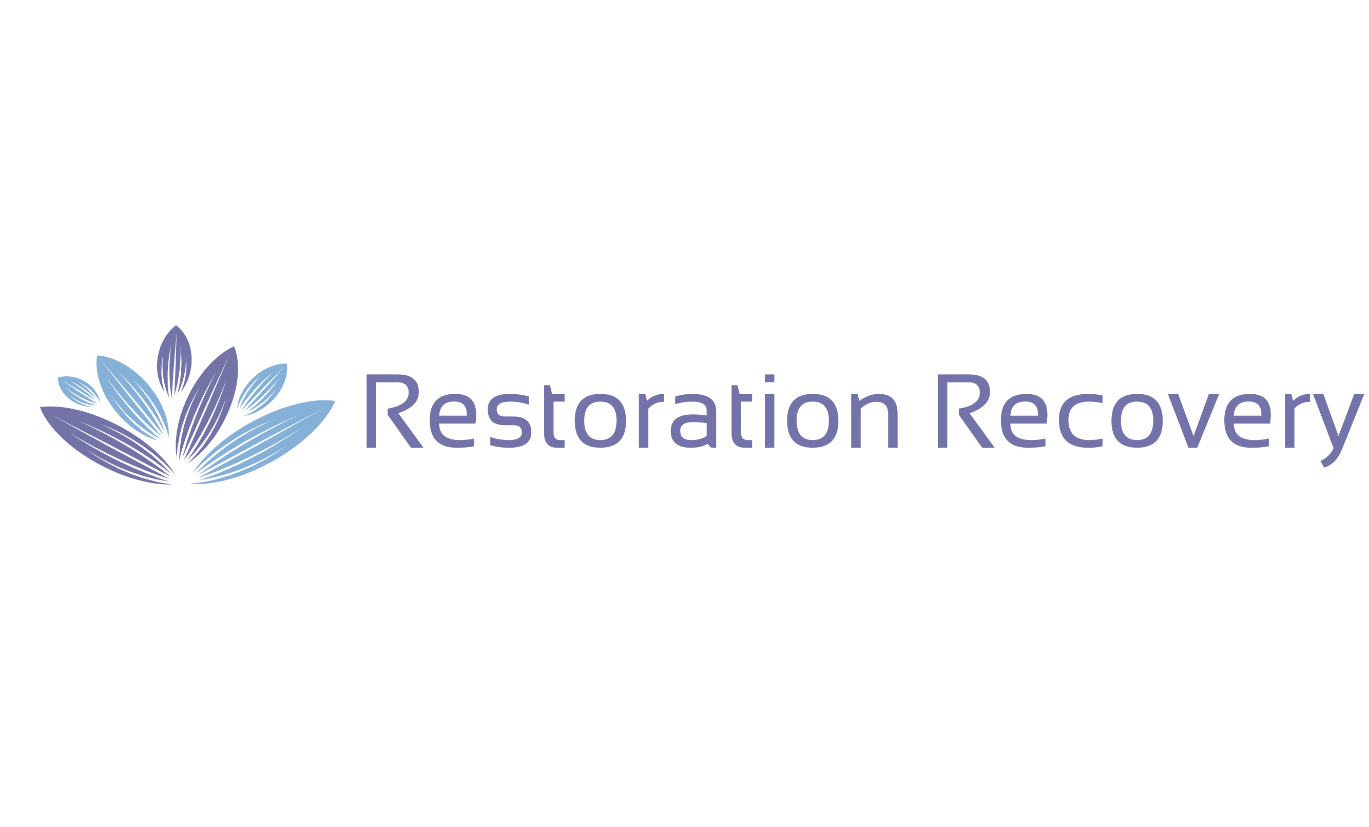 restoration recovery