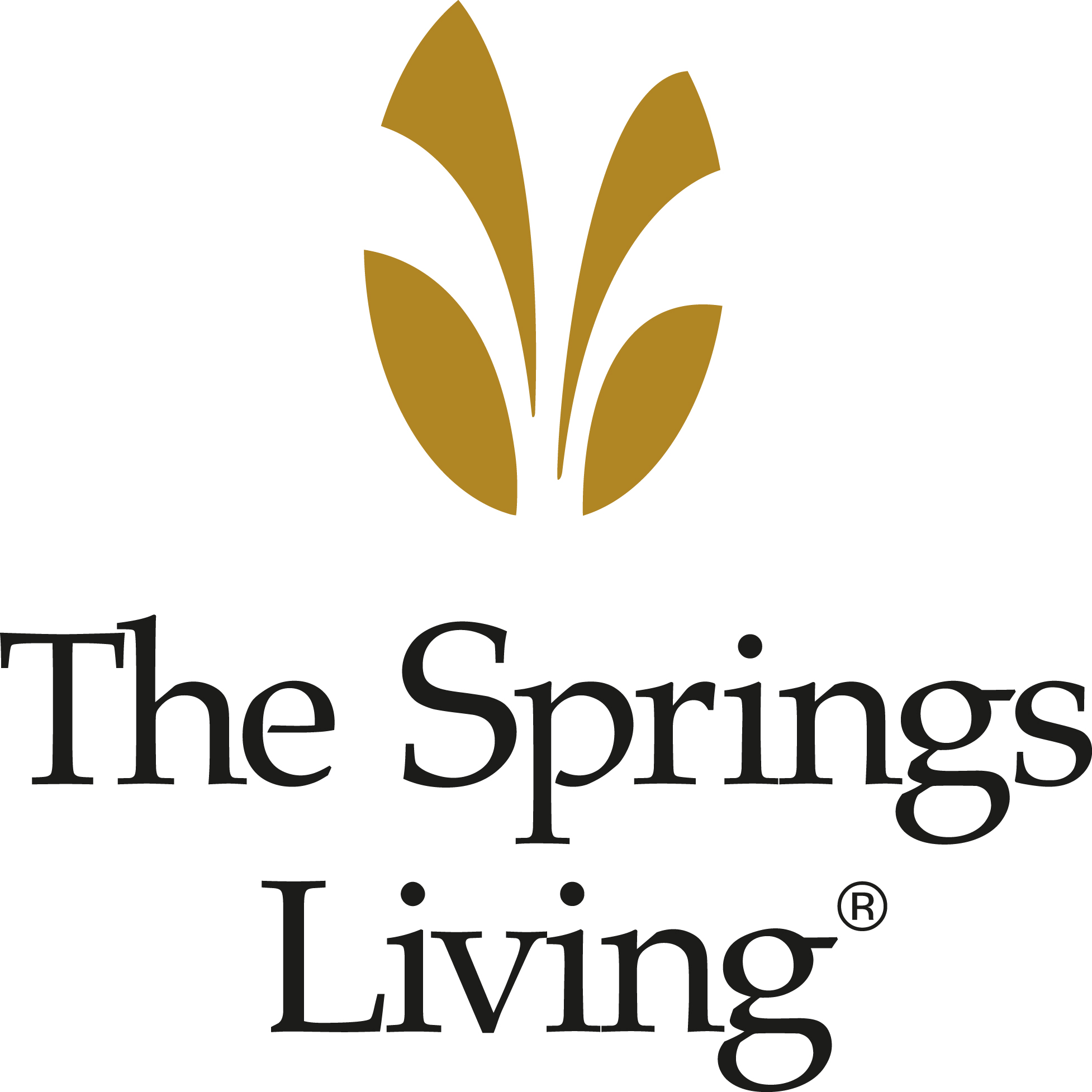 #4 The Springs Logo (Exclusive )