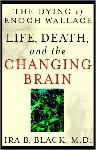 Click here for more information about The Dying of Enoch Wallace-Life and Death of the Changing Brain